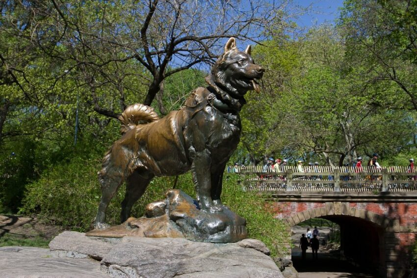 Balto in Central Park